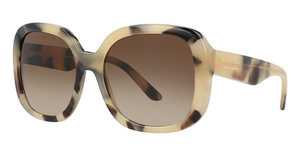 Burberry BE4259 Light Horn
