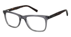 Ted Baker TM001 Eyeglasses