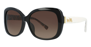 Coach HC8158F Sunglasses