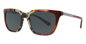 Coach HC8236 Sunglasses
