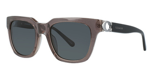 Coach HC8240F Sunglasses