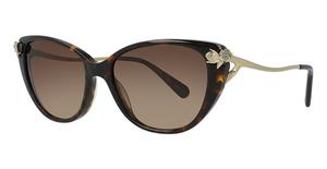 4fcedbd03f Coach HC8242B Sunglasses