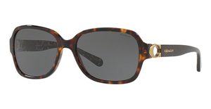 Coach HC8241 Sunglasses