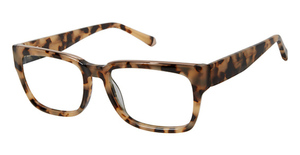 Kate Young K141 Tortoise