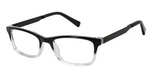 Ted Baker B964 Eyeglasses