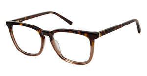 Kate Young K324 Tortoise/Brown