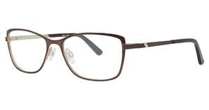 Aspex S3329 Shiny Dark Brown
