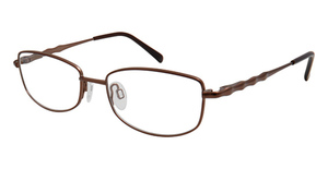 Aristar AR 16391 Brown