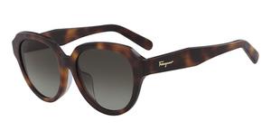 Salvatore Ferragamo SF906SA Sunglasses
