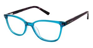 Ted Baker B969 Eyeglasses