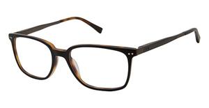Ted Baker TM003 Eyeglasses