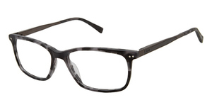 Ted Baker TM004 Eyeglasses