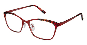 RACHEL Rachel Roy Bright Eyeglasses