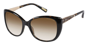 Guess GM0722 Tortoise / Gradient Brown Lens