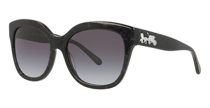Coach HC8264 Sunglasses