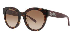 Coach HC8265F Sunglasses