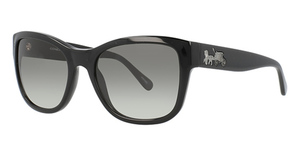 Coach HC8243 Sunglasses