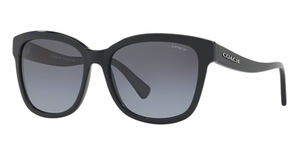 Coach HC8219 Sunglasses