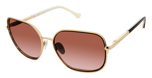 Buffalo by David Bitton BWS009 Sunglasses