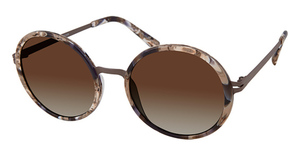 Modo 464 Sunglasses