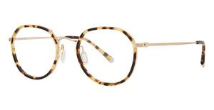 Paradigm 19-11 Eyeglasses