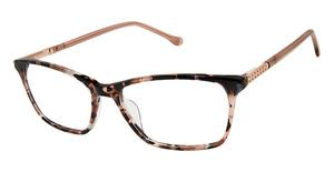 Buffalo by David Bitton BW014 Eyeglasses