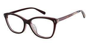 Phoebe Couture P334 Eyeglasses