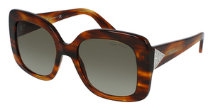 Ralph Lauren RL8169 Sunglasses
