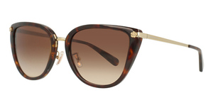 Coach HC8276 Sunglasses