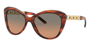 Ralph Lauren RL8184 Sunglasses