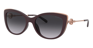 Michael Kors MK2127U Sunglasses