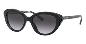 Coach HC8288 Sunglasses