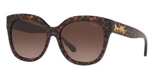 Coach HC8264 Sunglasses