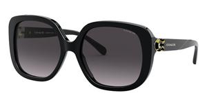 Coach HC8292F Sunglasses