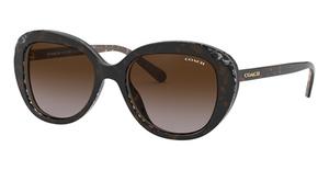 Coach HC8289F Sunglasses