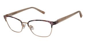 Ted Baker B978 Eyeglasses