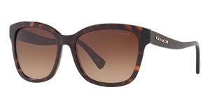 Coach HC8219 Sunglasses