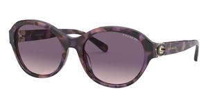 Coach HC8293 Sunglasses