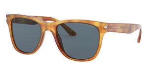 Giorgio Armani AR8133 Sunglasses