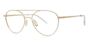Paradigm 21-03 Eyeglasses