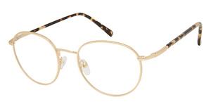 Midtown Eyewear WINSTON TF Eyeglasses