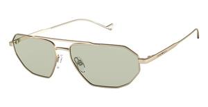 Emporio Armani EA2113 Sunglasses