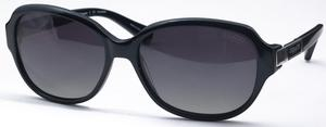 Coach HC8039 Sunglasses