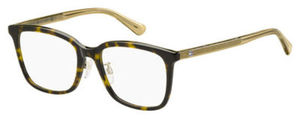 Tommy Hilfiger Th 1534/F Eyeglasses