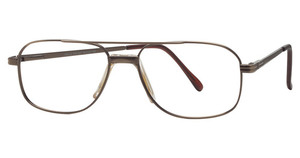 Bella Eyewear 309 Bronze