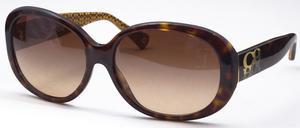 Coach HC8038 Sunglasses