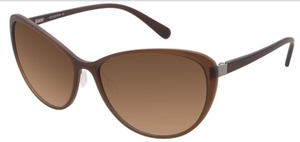 Aspex B6519 Dark Brown w/ Gradient Brown Lenses