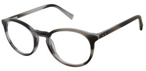 Ted Baker B895 Eyeglasses
