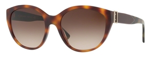 Burberry BE4242 Light Havana 02