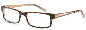 Converse City Limits Tortoise